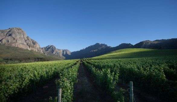 Wine Routes in Südafrika